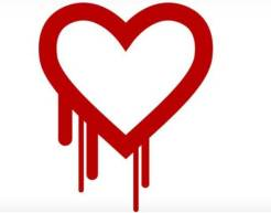 104237444-heartbleed