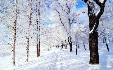 snow-street1